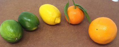 Fruit in the Chef'n FreshForce